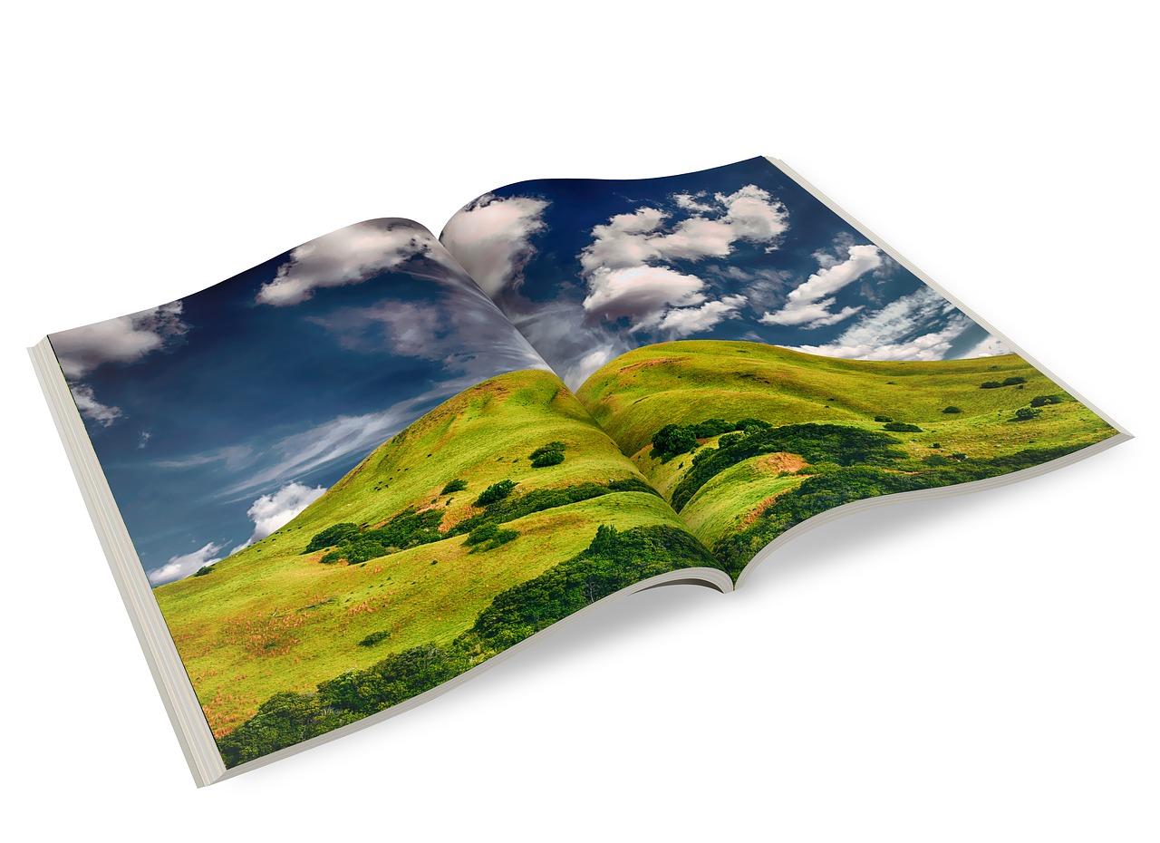 The Power of Effective Brochures